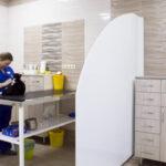 Случай в госпитале ВЕТМИР: Дермоидный синус