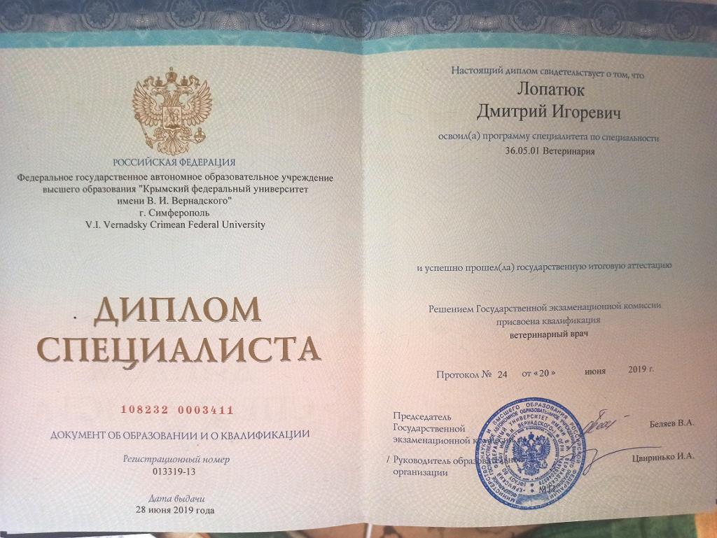 диплом Лопатюк Дмитрий Игоревич